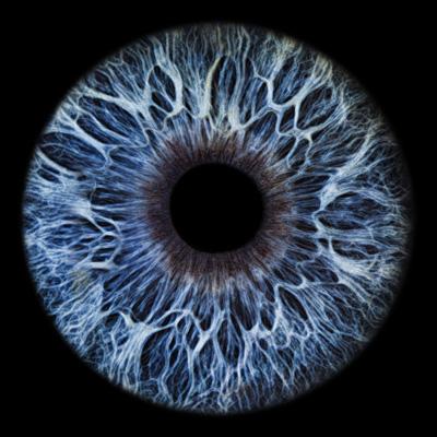 Art Photography Eyes